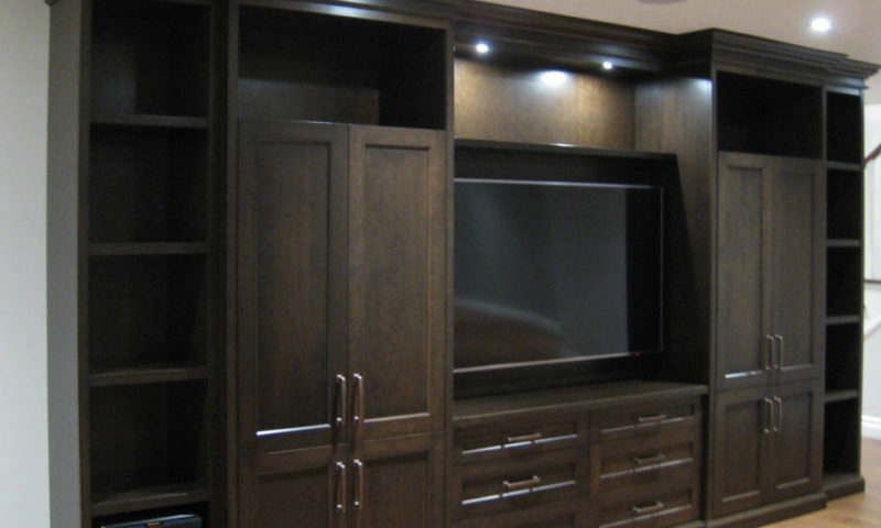 Family Room Media Unit
